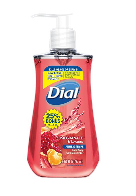 Dial Antibacterial Hand Wash (solution) The Dial