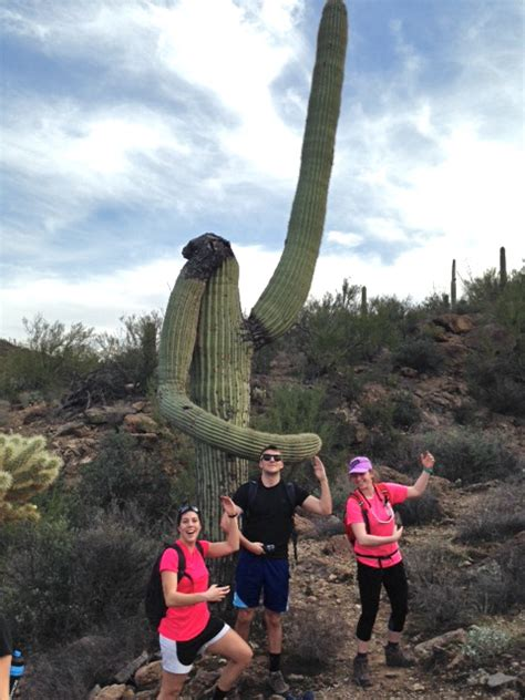 Extreme Physiology 2015 – Attack of the Jumping Cholla
