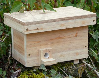 How to attract bumbles to an artificial nest - Honey Bee Suite