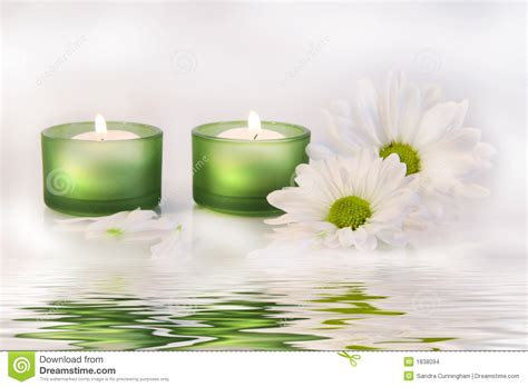 Green Candles And Daisies Near Water Reflection Stock