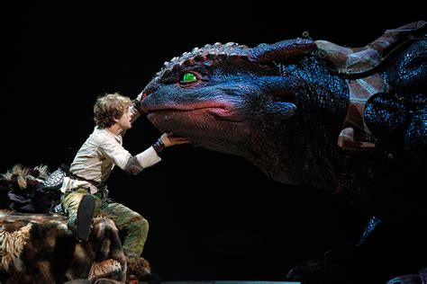 File:Hiccup, Toothless, How to Train Your Dragon Live
