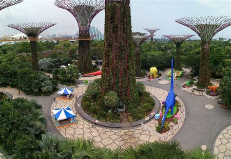 Supertree Grove - Ticket Prices, Opening Hours & Light